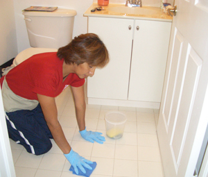 ev-temizliği
